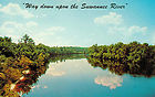 POST CARD SUWANNEE RIVER FLORIDA STEPHEN FOSTER'S SONG